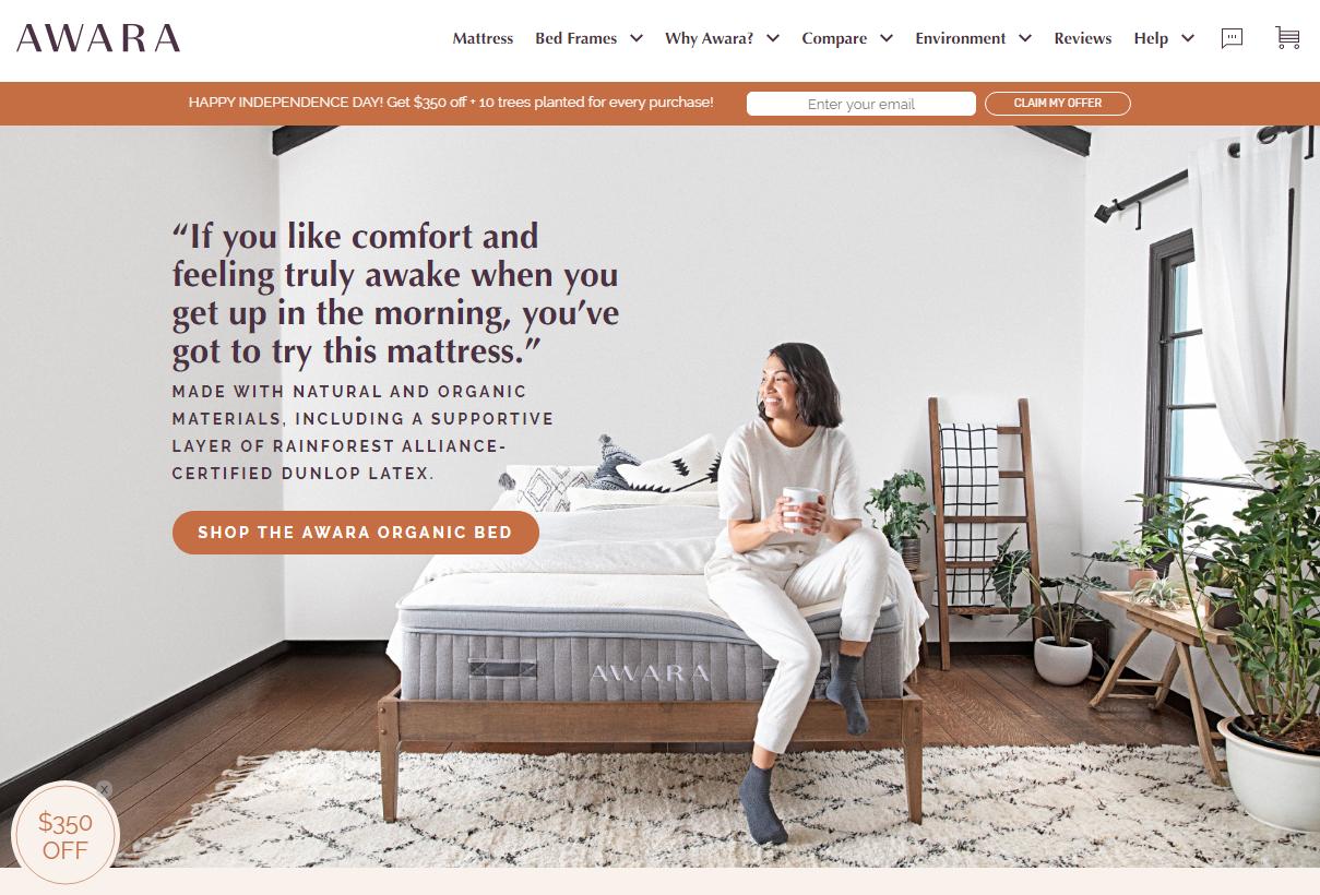 Idle Sleep Website